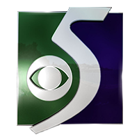 TV5 WNEM