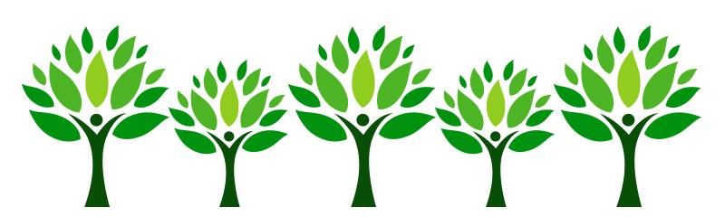 Flint Honored as Tree City USA