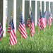 Annual Placement Of Flags At Avondale Cemetery