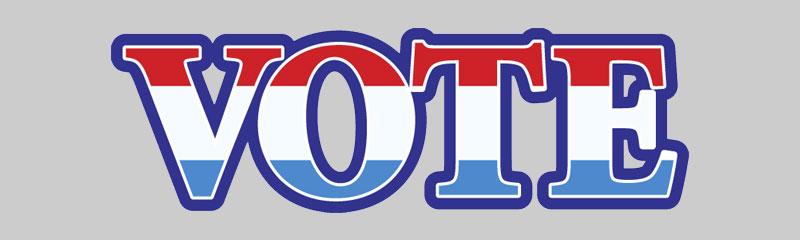 Vote November 8th