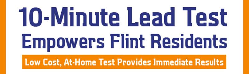 Watersafe 10-Minute Lead Test