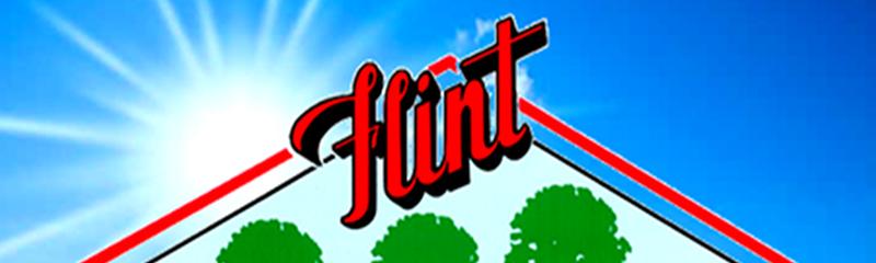 City of Flint Parks: Millage Renewal